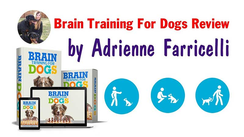 Brain Training For Dogs, FreedomHomeIncome