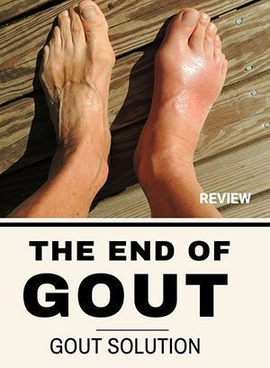download free The End of Gout pdf