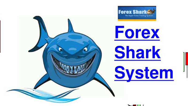Forex Shark Review, FreedomHomeIncome